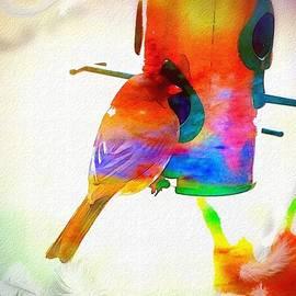 Christine Belanger - Color V