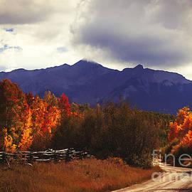 Janice Rae Pariza - Colorado Blazing Autumn
