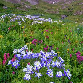 Aaron Spong - Colorado Sunrise - American Basin