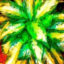 Gayle Price Thomas - Colorful Blast