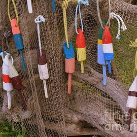 Dora Sofia Caputo Photographic Art and Design - Colorful Buoys and Crabbing Net