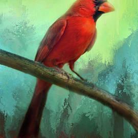 Barbara Manis - Colorful Cardinal