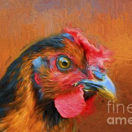 Darren Fisher - Colorful Chicken