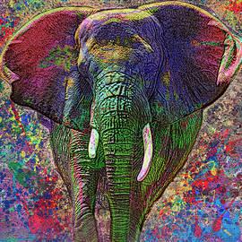 Jack Zulli - Colorful Elephant