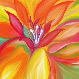 Sheela Ajith - Colorful Flower