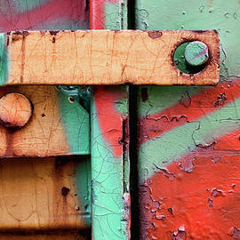 Colorful Train Details - Carol Leigh