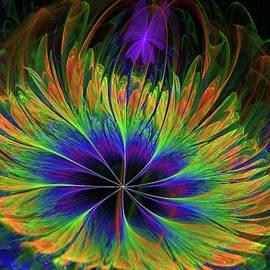Lilia D - Colorful Tropical Flower