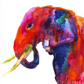 Svetlana Novikova - Colorful watercolor elephant