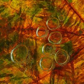 Sami Tiainen - Colors of Nature 10