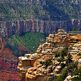Colors Of Nature - Grand Canyon Overlook 002