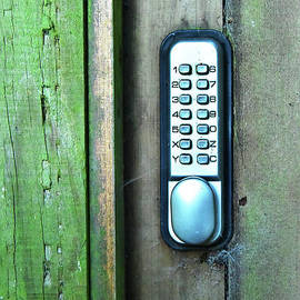 Svetlana Sewell - Combination Lock