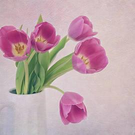 Kim Hojnacki - Come Spring