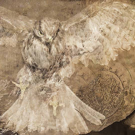 Jeff Burgess - Conceptual Flight