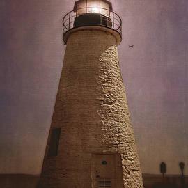 Trina  Ansel - Concord Point Lighthouse