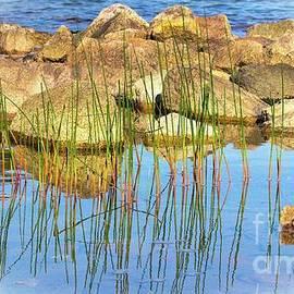 Kris Hiemstra - contemplation at Jordan Pond