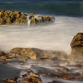 Carol Eade - Coral Cove Beach