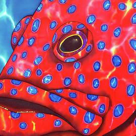 Daniel Jean-Baptiste - Coral Grouper Fish