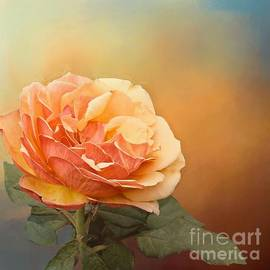 Janette Boyd - Coral Rose with Scattered Sunshine