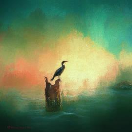 Marvin Spates - Cormorat Sunset