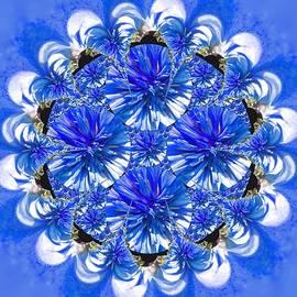 Nancy Pauling - Cornflower Blue