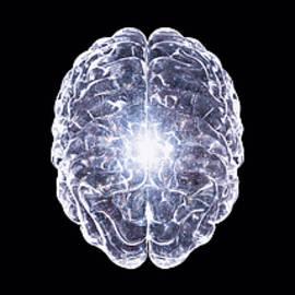 Crean Quaner - Cosmic_Brain_003