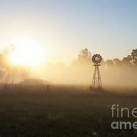 Jennifer White - Country Foggy Morning