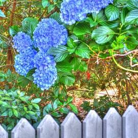 Linda Covino - Country garden