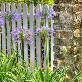 Linda Covino - Country isle garden