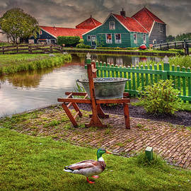 Hanny Heim - Country Life