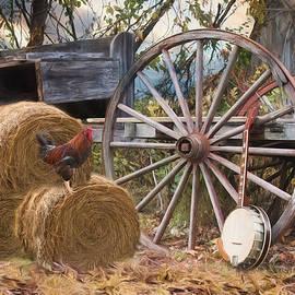 Robin-lee Vieira - Country Music II