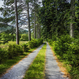 Ian Mitchell - Country Path Walks