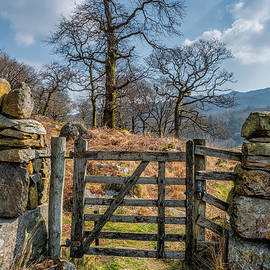 Adrian Evans - Countryside Gate
