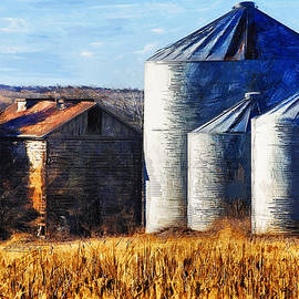 Anna Louise - Countryside Old Barn and Silos