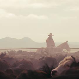 Todd Klassy - Cowboy Dawn