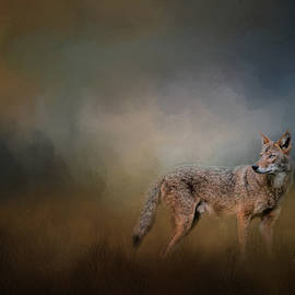 Jai Johnson - Coyote At Shiloh