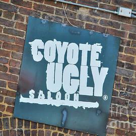 Pamela Williams - Coyote Ugly