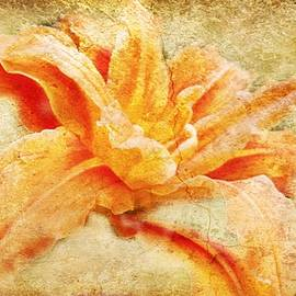 Kathy Barney - Crackled Orange Lilly