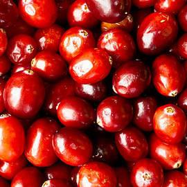 Cranberries Foodie Phone Case - Edward Fielding