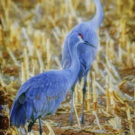 Janice Rae Pariza - Cranes in Autumn Cornfield