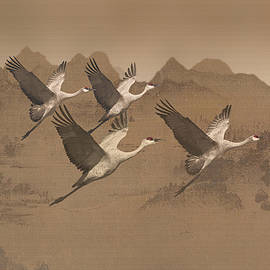 Matt Schwartz - Cranes Migrating Over Mongolia