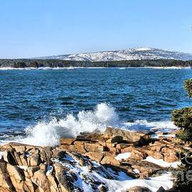Debbie Stahre - Crashing Acadia Waves