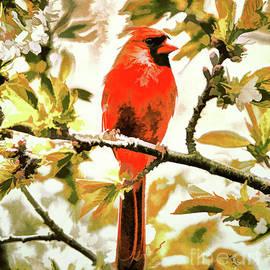 Tina LeCour - Crimson Cardinal
