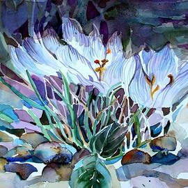 Mindy Newman - Crocus Saffron