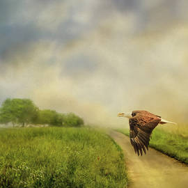 Jai Johnson - Crossing Over Bald Eagle Art by Jai Johnson