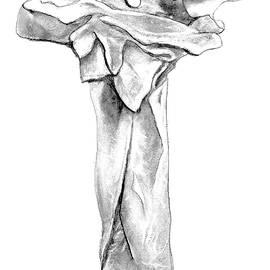 VIVA Anderson - Cruciform