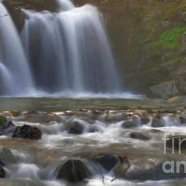 Along The Trail - Crystal Creek Falls Digital Paint