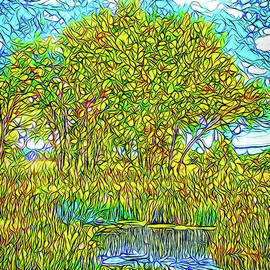 Joel Bruce Wallach - Crystalline Trees - Lake In Boulder County Colorado