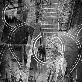 Randall Nyhof - Cubist Guitar with Roots Music