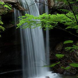 Rich Sirko - Cucumber Falls