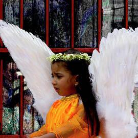 Al Bourassa - Cuenca Kids 799